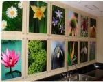 Acrylic-Paneling